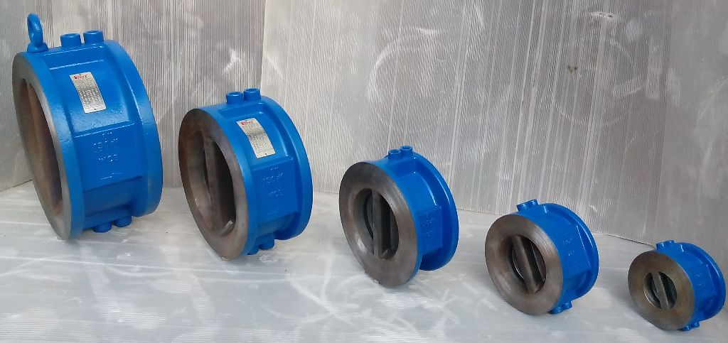 Dual Plate Type Check Valve, Spring Loaded