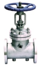Steam Jacketed Globe Valve Flanged End